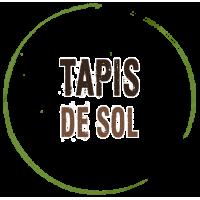 Tapis de Sol pour tente de randonnée légère msr footprint protection